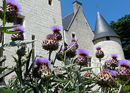 Chateau of Rivau and gardens in the Loire Valley